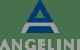 angelini-logo-C48C5BF746-seeklogo.com